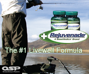 The #1 Livewell Formula